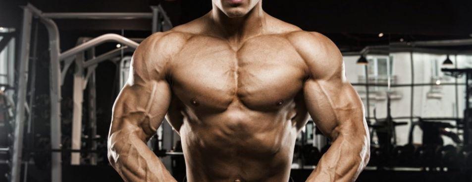 bodybuilder using SARMs